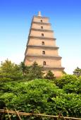 Giant Wild Goose Pagoda, Xian, Shaanxi province, China — Stock Photo