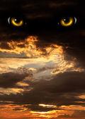 Orrore a notte — Foto Stock
