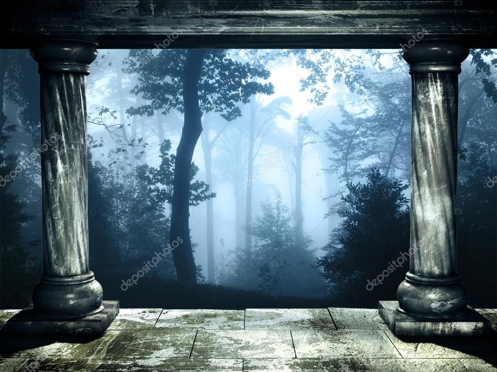 Фотообои Таинственный пейзаж туманный лес