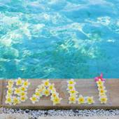 Word Bali written with frangipani flowers — Stock Photo