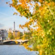Scenic view of the Eiffel tower across the Seine — Stock Photo #57756537