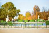 Traditional green chairs in Tuileries garden — Stock Photo