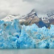 Blue icebergs at Grey Glacier in Torres del Paine — Stock Photo #58643657