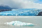 Blue icebergs at Grey Glacier in Torres del Paine — Stock Photo