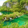 Beautiful cascades in Plitvice national park — Stock Photo #61826295