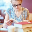 Beautiful young student with lots of books — Stock Photo #70155019