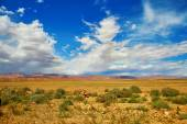 Beautiful landscape in Northern Atlas — Stock Photo
