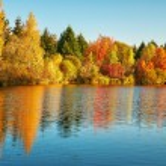doğal sonbahar manzarası — Stok fotoğraf #78844300
