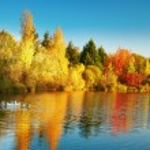 doğal sonbahar manzarası — Stok fotoğraf #78844314