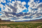 Beautiful landscape in Northern Atlas, Morocco, Africa — Stock Photo