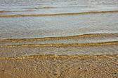 Transparent Baltic sea. — Stok fotoğraf