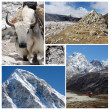 Collage of popular Nepalese high altitude touristic route - Everest Base Camp trek, Himalaya mountains — Stock Photo #54836169