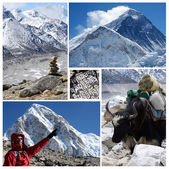 Collage of popular high altitude touristic route Everest Base Camp trek, Himalaya mountains - Kala Patthar and Chomolungma mountains,Khumbu icefall — Stock Photo