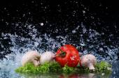 Red tomato cherry, mushrooms and green fresh salad with water drop splash — Stock Photo