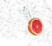 Studio shot of fresh grapefruit with water splash, isolated on white background — Stock Photo