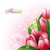 Beautiful flowers background, vector illustration with tulips — Stockvector