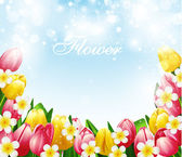 Beautiful flowers background, vector illustration with tulips an — 图库矢量图片