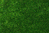 Grön gräsmatta — Stockfoto