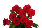 红玫瑰花束 — 图库照片