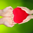 Red heart in hands — Stock Photo #63750313