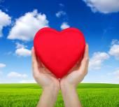 Corazón rojo en las manos — Foto de Stock