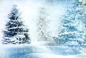 Christmas tree in snow — Stock Photo