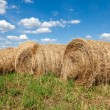 Round straw bales in harvested fields and blue sky with clouds — Stock Photo #53777657