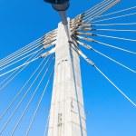 Modern cable bridge pylon against blue sky — Stock Photo #55700389