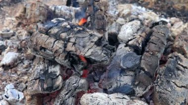 Closeup view of a bonfire flames and burning firewood — Стоковое видео