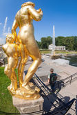 Peterhof Palace with Grand Cascade in sunny day — Stock Photo