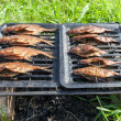 Homemade smoked fresh fish on the outdoors — Stock Photo #60842089
