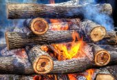 Closeup of hot burning firewood in a campfire — Stok fotoğraf