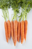 Young carrots with tops of vegetable on a light background — Stock Photo