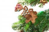 Gingerbread cookies on christmas tree — Stock Photo