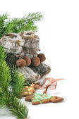 Winter boots, christmas tree and ginger cookies — Stockfoto
