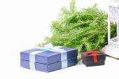 Christmas gifts, green spruce and lantern — Foto Stock