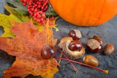 Autumn maple leaves with chestnuts and pumpkin — Stock Photo
