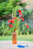Bunch of of red poppies and cornflowers — Stock Photo