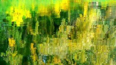 Żółte liście odbite w wodzie — Wideo stockowe