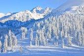 Horská krajina. schladming. rakousko — Stock fotografie