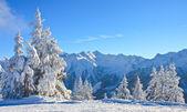 山地景观。斯。奥地利 — 图库照片