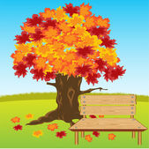 Bench under tree — Stock Vector