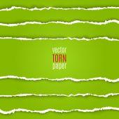 Green torn paper — Stock Vector