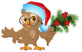 Owl in a Santa Claus hat holding a fir branch — Vector de stock