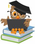 Owl sitting on books and holding a laptop — Stock Vector