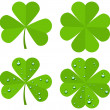 Set clover leaves isolated on white background — Stock Vector #65488787