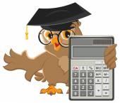 Owl teacher holding calculator — Stock Vector