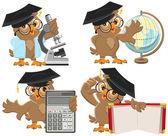 Set owls teachers — Stock Vector