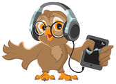 Owl with headphones listening to music — Stock Vector