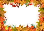 Autumn leaves, rowan and flowers. Template frame — Stock Vector
